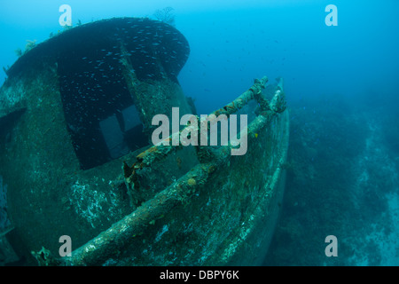 The Mr. Bud, a former shrimping boat, scuttled off the island of Roatan, Honduras and now used as a scuba diving - Stock Photo