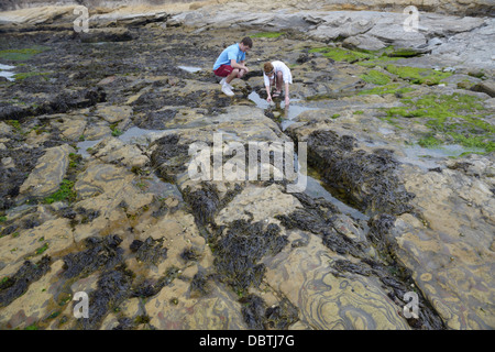 Teens tidepooling, Point Lobos State Natural Reserve, CA - Stock Photo