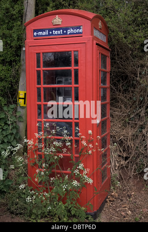 UK red telephone and wild flowers showing lack of use - Stock Photo