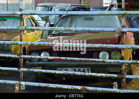 Scrap My Car London >> abandoned cars in a scrap yard in South East London Stock Photo: 5985609 - Alamy