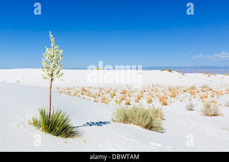 White Sands National Monument, near Alamogordo, New Mexico, USA - Stock Photo