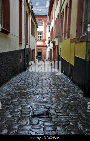 (dpa-file) - A handout file picture dated 27 December 2012 shows a narrow street in Heidelberg, Germany. Photo:Berliner - Stock Photo