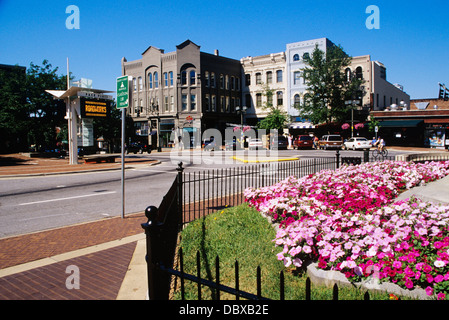 ASHEVILLE NC FLOWERBED IN PARK DOWNTOWN - Stock Photo