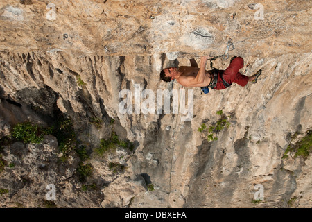 Elevated view Strong muscular sport climber climbs vertical and overhanging rock wall. Tufas and plants are seen - Stock Photo