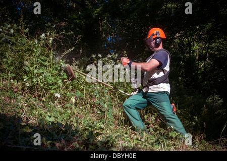 strimming,safety equipment,strimmer,strimmers,farmer, united kingdom, tree, meadow, trail, grazing, tourist destinati - Stock Photo