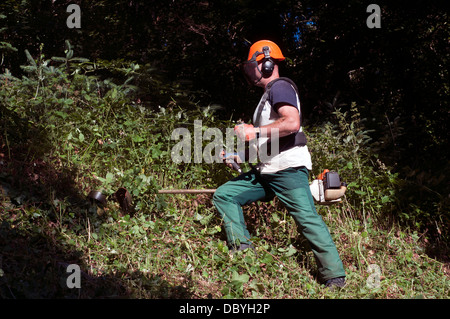 strimming,safety equipment,strimmer,strimmers, backyard, blue, close-up, color, cord, cutter, cutting, day, edger, - Stock Photo