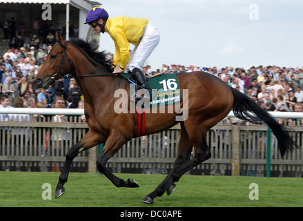 Sea the Stars, ridden by Mick Kinane, on his way to the start at Newmarket before winning the English 2000 Guineas. - Stock Photo