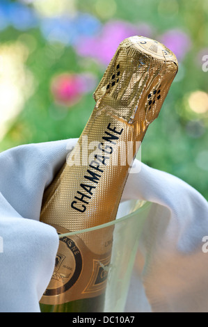 Close view on Champagne bottle in crystal wine cooler in alfresco summer event situation - Stock Photo