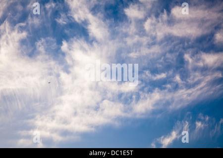 A single plane flies underneath cirrocumulus cloud on a summer's day. - Stock Photo