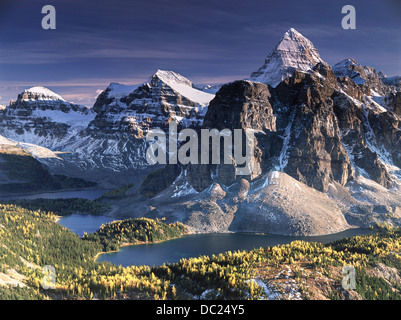 Mount Assiniboine near Banff in the fall. Golden yellow larches in the foreground. Assiniboine is known as Canada's - Stock Photo