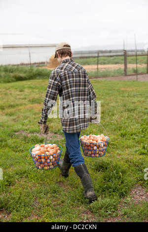 Boy carrying two baskets of eggs - Stock Photo