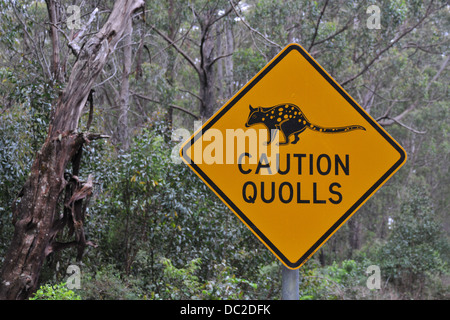 road sign in quoll habitat in Northern New South Wales, Australia - Stock Photo