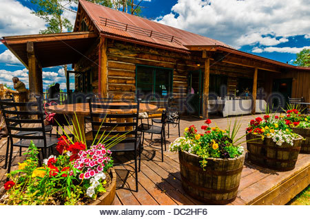 colorado exceptional aspen co turnkey cabins vacation rentals