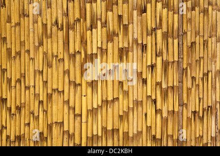 Abstract background of vertical, yellow bamboo strips. - Stock Photo