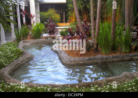 Florida Weston Fort Ft. Lauderdale Bonaventure Resort and & Spa hotel protected habitat plants water - Stock Photo
