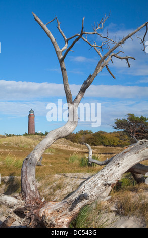 Europa, Deutschland, Mecklenburg-Vorpommern,Fischland-Darss-Zingst,Prerow  Lighthouse Darsser Ort - Stock Photo