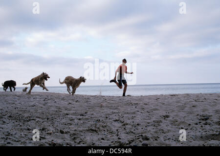 Woman and dogs running on beach - Stock Photo