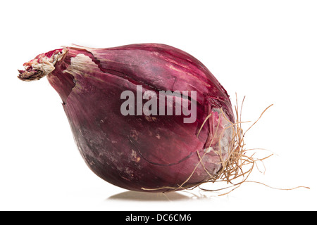 Red onion bulb - Stock Photo