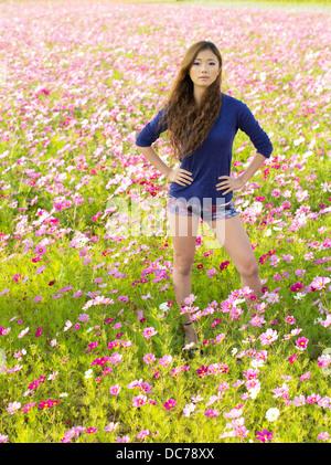 Beautiful Japanese girl in field of cosmos flowers, Kin Town, Okinawa, Japan