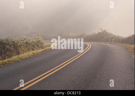 Windy road in fog dangerous curve - Stock Photo
