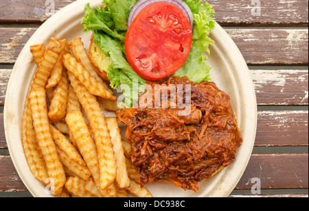 pulled pork/chicken sandwich with fries and side salad - Stock Photo