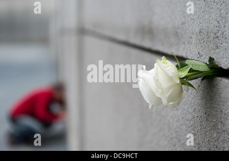 Berlin, Germany. 13th Aug, 2013. A single white rose sticks out of the wall Tourists from Switzerland visit at the - Stock Photo