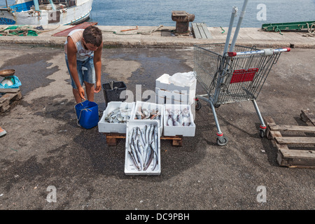 Freshly caught fish for sale at the quayside in Gallipoli, Apulia, Salento region of southern Italy - Stock Photo