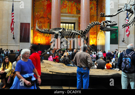 Visitors at the Theodore Roosevelt Rotunda iconic dinosaur exhibit at the museum of natural history in Manhattan - Stock Photo
