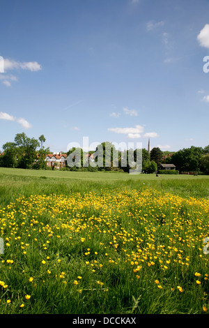 View over the corner of Hampstead Heath to St Anne's church in Dartmouth Park, London, UK - Stock Photo