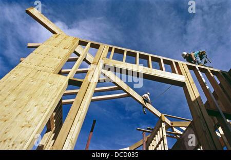 Carpenters framing a roof. Grass Valley, California. USA Stock Photo ...