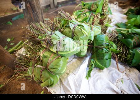 Bundles of Khat wrapped in banana leaves awaiting packing, Maua, Meru region, Kenya - Stock Photo