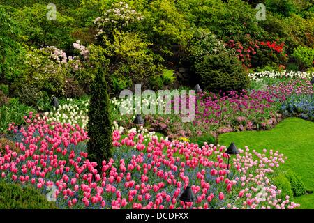 Butchart Gardens- Floral displays in the Sunken Garden, Victoria, BC, Canada - Stock Photo