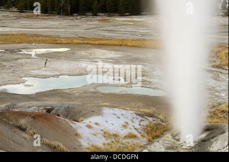 Black Growler Steam vents in Porcelain Basin at the Norris Geyser Basin - Stock Photo