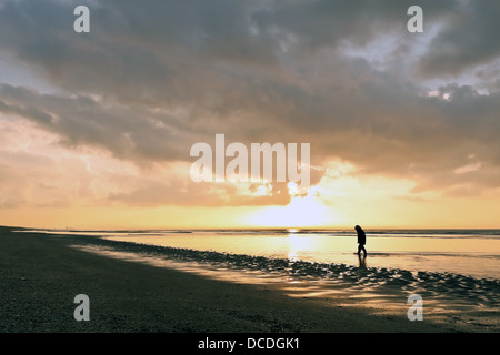 A little boy, wearing gumboots is sloshing in the water at sunset, on the beach of Katwijk aan Zee, South Holland, - Stock Photo