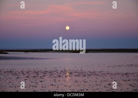 Stes.-Maries-de-la-Mer, sunset over the marshland, Camargue, Provence, France - Stock Photo