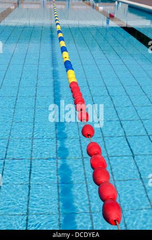 olympic hopeful in training lane olympic size pool stock photo