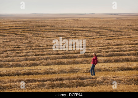 A Woman Stands In A Harvested Wheat Field; Three Hills, Alberta, Canada - Stock Photo