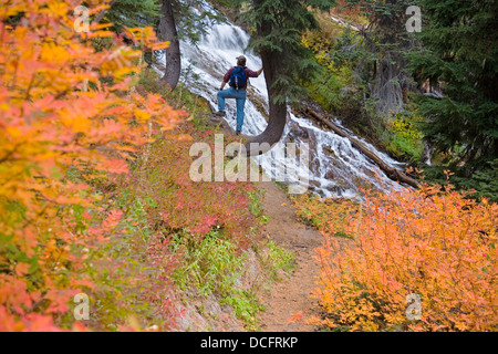 Hiker On Trail At Umbrella Falls In Autumn; Mount Hood National Forest, Oregon, Usa - Stock Photo