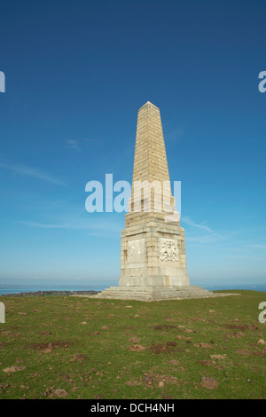 shot of Yarborough Monument on culver down - Stock Photo