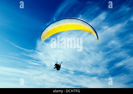 Paraglider in the sky - Stock Photo