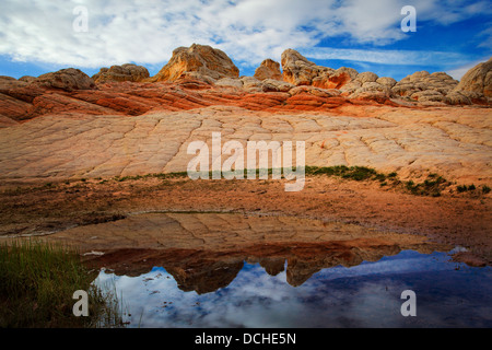 Rock formations in the White Pocket unit of the Vermilion Cliffs National Monument - Stock Photo