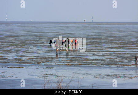 Watt-hiking with a guide during Ebb at the beach of Duhnen. With ebb, the sinking sea-mirror is marked because of the tides. The end of the ebb is called tide-low waters. Photo: Klaus Nowottnick Date: May 11, 2013 Stock Photo
