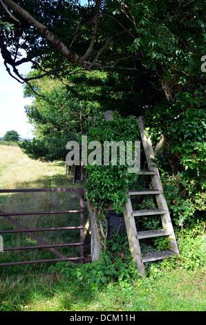 Ladder stile and steel 5-bar gate on a public footpath at Rhydyronen near Tywyn, Gwynedd, Wales - Stock Photo