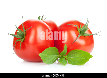 Three ripe tomatoes and basil. Isolated on white background - Stock Photo