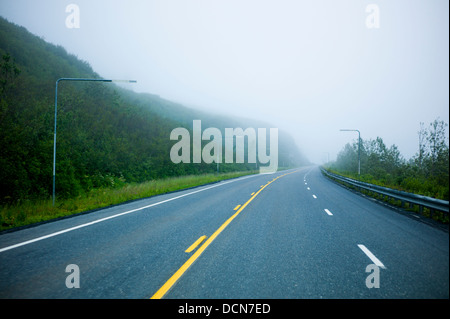 Foggy and wet Highway 4, Richardson Highway, Thompson Pass, near Valdez, Alaska, USA. Overhead markers help drivers - Stock Photo