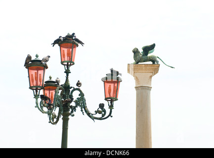Pigeons on Venetian street lamps, with winged lion of Saint Mark in the background, Venice, Italy - Stock Photo