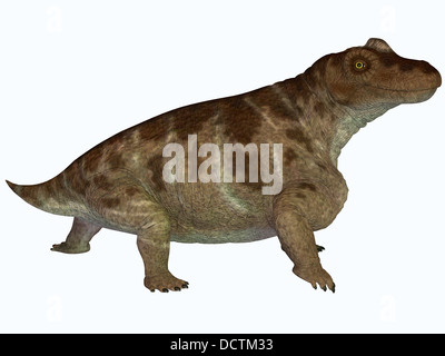 Keratocephalus was a semi-aquatic herbivore dinosaur that lived in the Permian Age of Africa. - Stock Photo