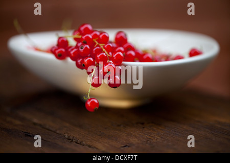 Redcurrant in the bowl - Stock Photo