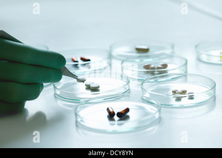 Scientist Holding Pill with Tweezers over Petri Dish