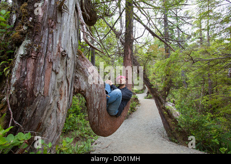 A Man Takes A Rest On A Large Tree Branch Along The Wild Pacific Trail On Vancouver Island; Ucluelet, British Columbia, - Stock Photo